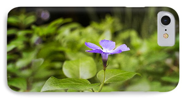 IPhone Case featuring the photograph A Bit Of Purple by Maria Janicki