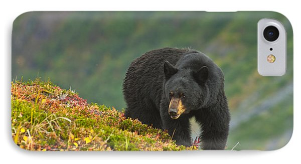 A Black Bear Foraging For Berries On A IPhone Case by Michael Jones
