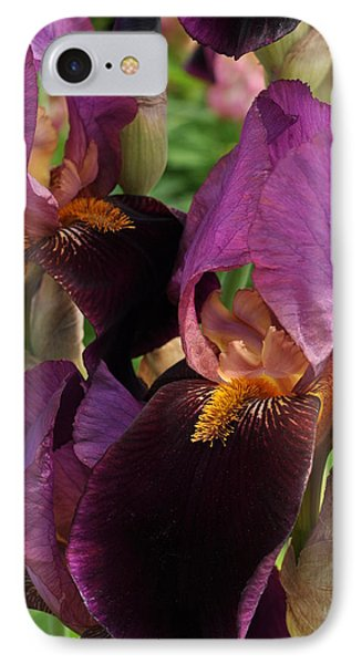 IPhone Case featuring the photograph A Bouquet Of Lilies by Sabine Edrissi