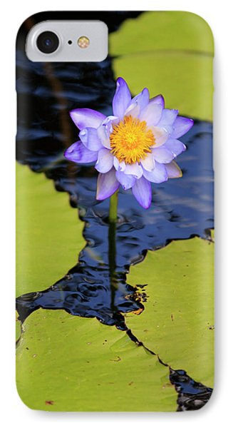 Far North Queensland iPhone 7 Case - A Bright Purple Water Lily by Paul Dymond