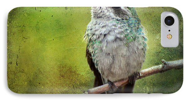 A Broad-billed Hummer IPhone Case