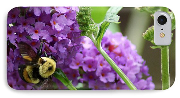 A Bumblebee In The Garden Phone Case by Kim Pate