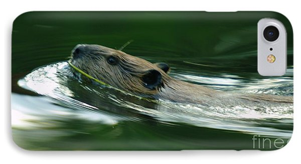 A Busy Beaver  Phone Case by Jeff Swan