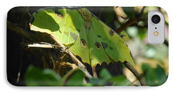 A Buttterfly Resting Phone Case by Jeff Swan