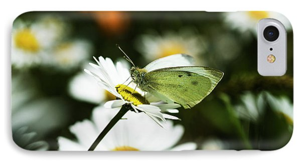 A Cabbage White Butterfly Rests IPhone Case by Robert L. Potts