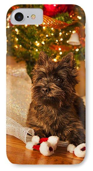 A Cairn Terrier Christmas Portrait Phone Case by Heidi Marcinik