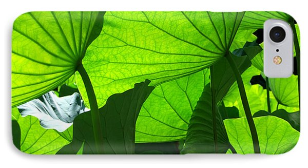 IPhone Case featuring the photograph A Canopy Of Lotus Leaves by Larry Knipfing