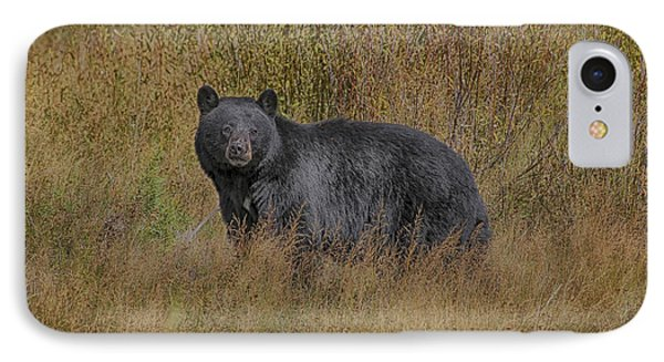 IPhone Case featuring the photograph A Casual Glance by Gary Hall