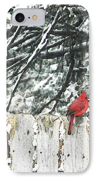 A Christmas Cardinal IPhone Case by PainterArtist FIN