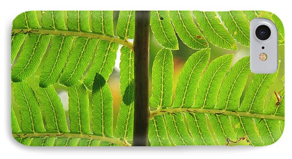 Far North Queensland iPhone 7 Case - A Close-up Detail Of A Fern by Paul Dymond