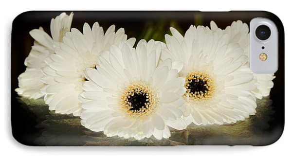 A Cluster Of White Gerber Daisies IPhone Case