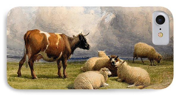 A Cow And Five Sheep IPhone Case by Thomas Sidney Cooper