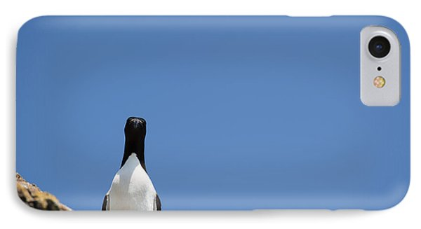 A Curious Bird IPhone 7 Case