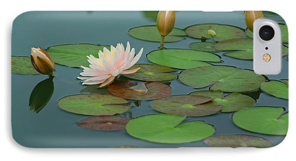 A Day At The Lily Pond IPhone Case by Suzanne Gaff