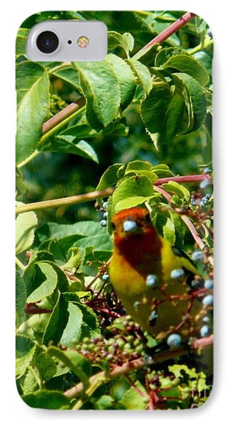 A Day With Mr. Tanager 2 Phone Case by Jacquelyn Roberts