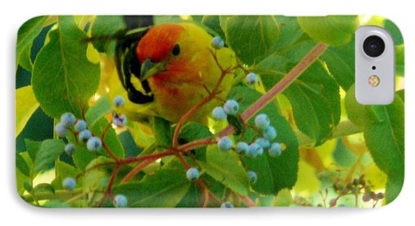 A Day With Mr. Tanager 3 Phone Case by Jacquelyn Roberts