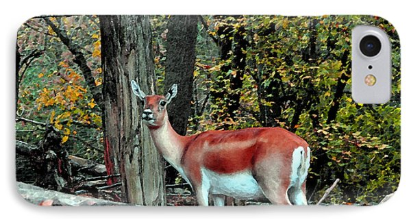 A Deer Look IPhone Case by Lydia Holly