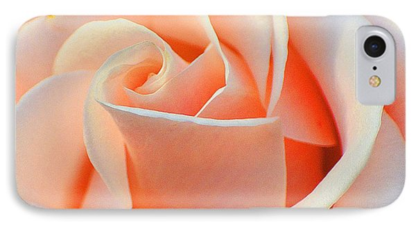A Delicate Rose IPhone Case by Cindy Manero