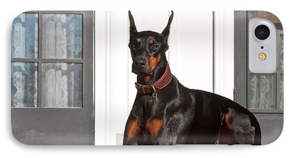 A Doberman Pinscher Lying On A Red IPhone Case by Zandria Muench Beraldo