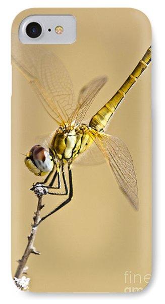 A Dragon Flies IPhone Case by Heiko Koehrer-Wagner