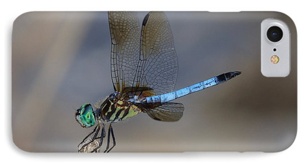 A Dragonfly Iv IPhone Case