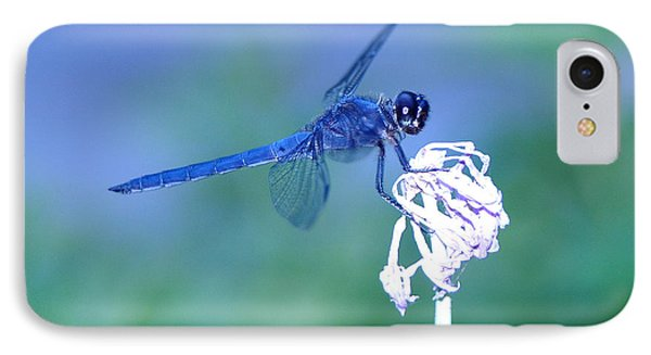 A Dragonfly V Phone Case by Raymond Salani III