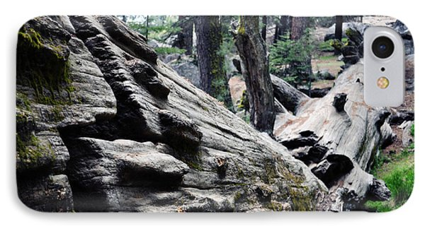 IPhone Case featuring the photograph A Fallen Giant Sequoia by Kyle Hanson