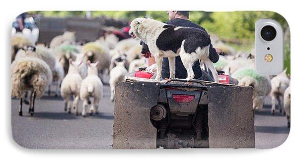 A Farmer Droving Sheep From A Quad Bike IPhone Case
