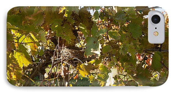 IPhone Case featuring the photograph A Few Grapes Left For The Birds by Carol Lynn Coronios