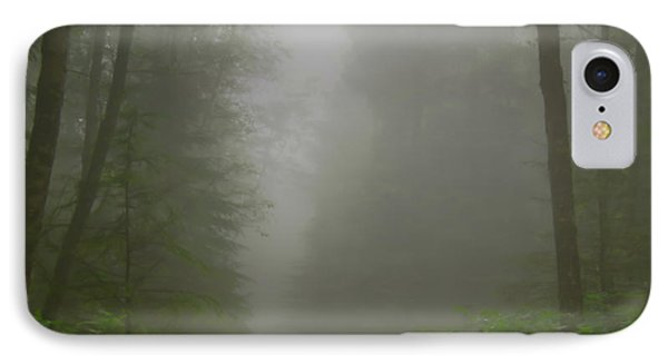 IPhone Case featuring the photograph A Few Steps Into The Mist by Don Schwartz