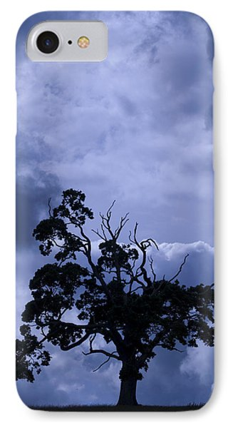 IPhone Case featuring the photograph A Flash Of Blue Tree by Sally Ross