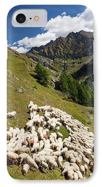A Flock Of Sheep By The Refuge Bertone IPhone Case