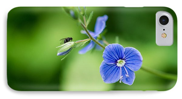 A Flower And A Fly - Featured 3 IPhone Case