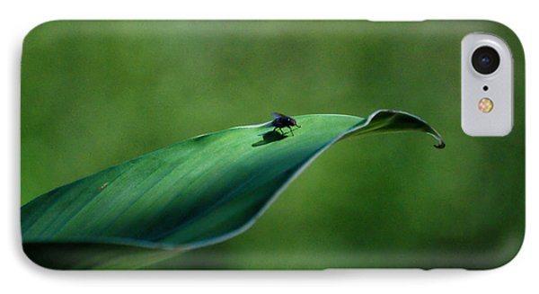 IPhone Case featuring the photograph A Fly And His Shadow by Thomas Woolworth