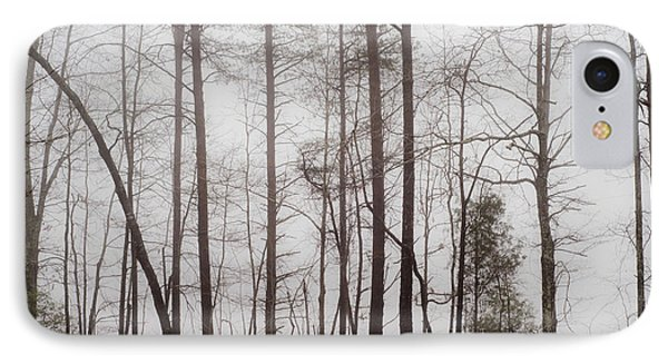 A Foggy Day In Virginia IPhone Case by Laura DAddona