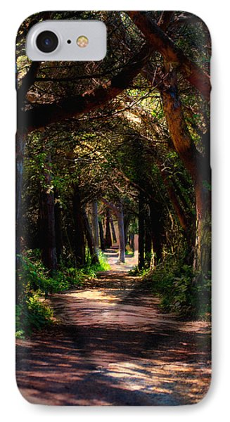 A Forest Path -dungeness Spit - Sequim Washington IPhone Case