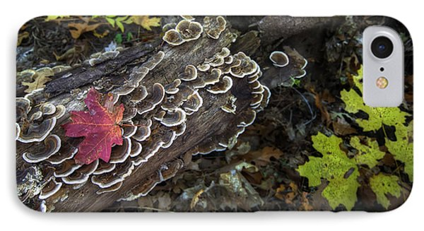 A Forest Tide Pool Phone Case by Sean Foster