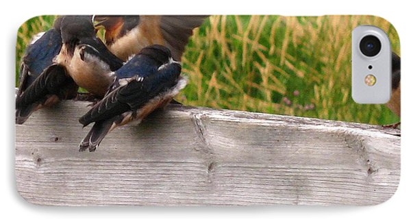 A Fourth Baby Barn Swallow Wants In On Lunch IPhone Case