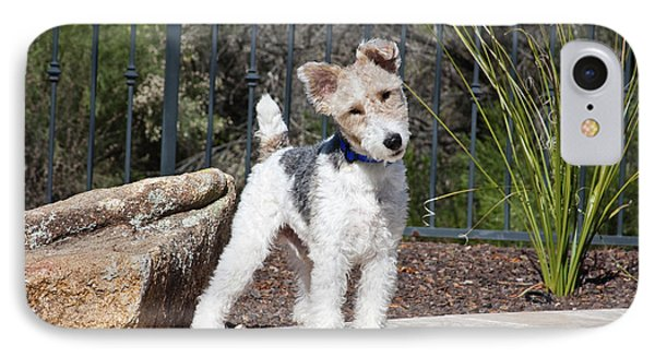 A Fox Terrier Puppy Standing On A Patio IPhone Case