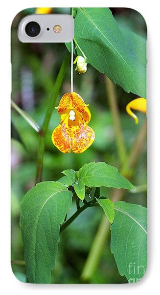 IPhone Case featuring the photograph A Fragile Flower by Chalet Roome-Rigdon