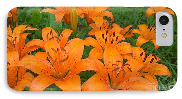 A Garden Full Of Lilies IPhone Case