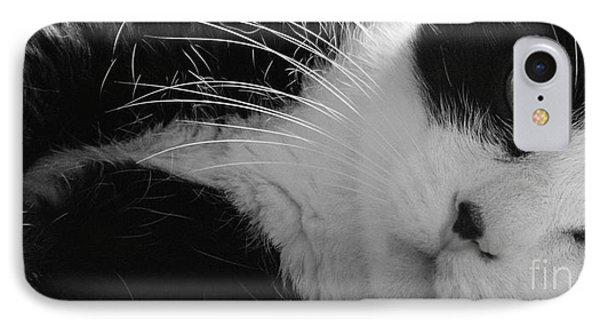 A Gentle Cat - Monochrome IPhone Case by David Warrington