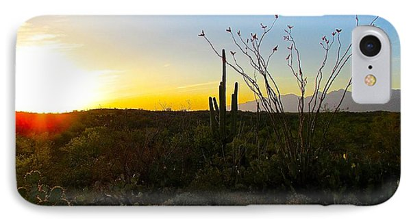 A Gentle End To The Day IPhone Case by Brenda Pressnall