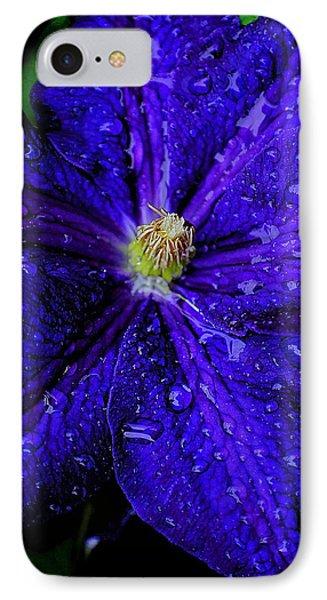 A Gentle Rain Phone Case by Frozen in Time Fine Art Photography
