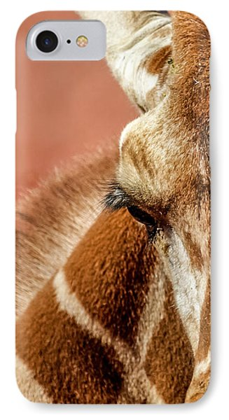 A Giraffe IPhone Case