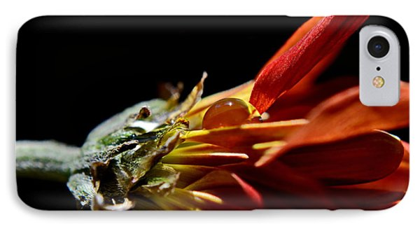 IPhone Case featuring the photograph A Glow In The Darkness by Michelle Meenawong