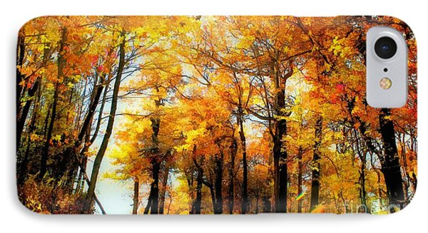 A Golden Day IPhone Case by Lois Bryan
