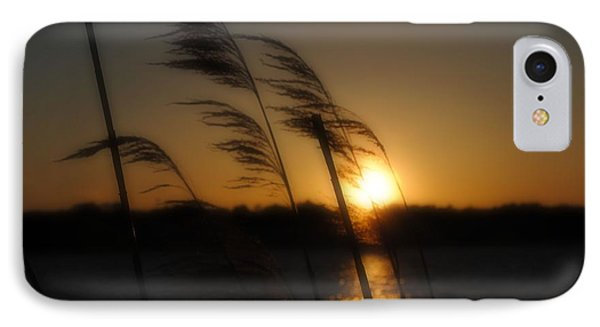 A Golden Evening IPhone Case