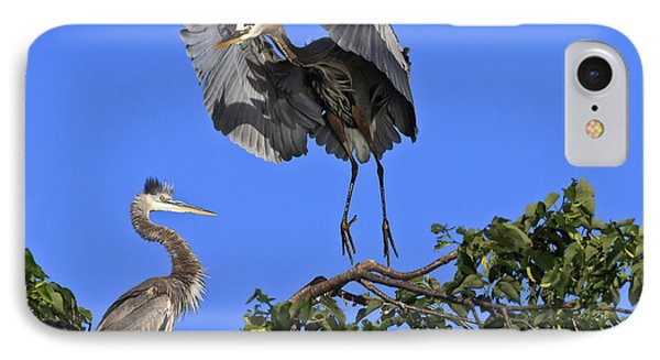 A Graceful Landing IPhone Case by Gary Hall