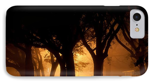 A Grove Of Trees Surrounded By Fog And Golden Light IPhone Case